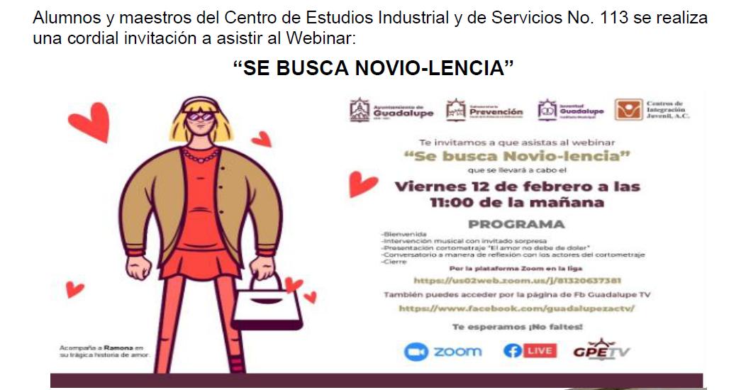 """""""SE BUSCA NOVIO-LENCIA"""" Webinar"""