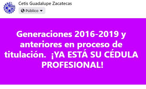 Cédulas profesionales electrónicas Generaciones 2016-2019 y anteriores